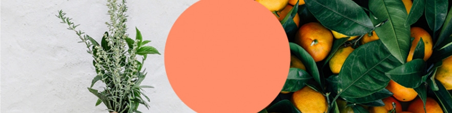 Mandarine Aromatique - Mandarino Aromatico