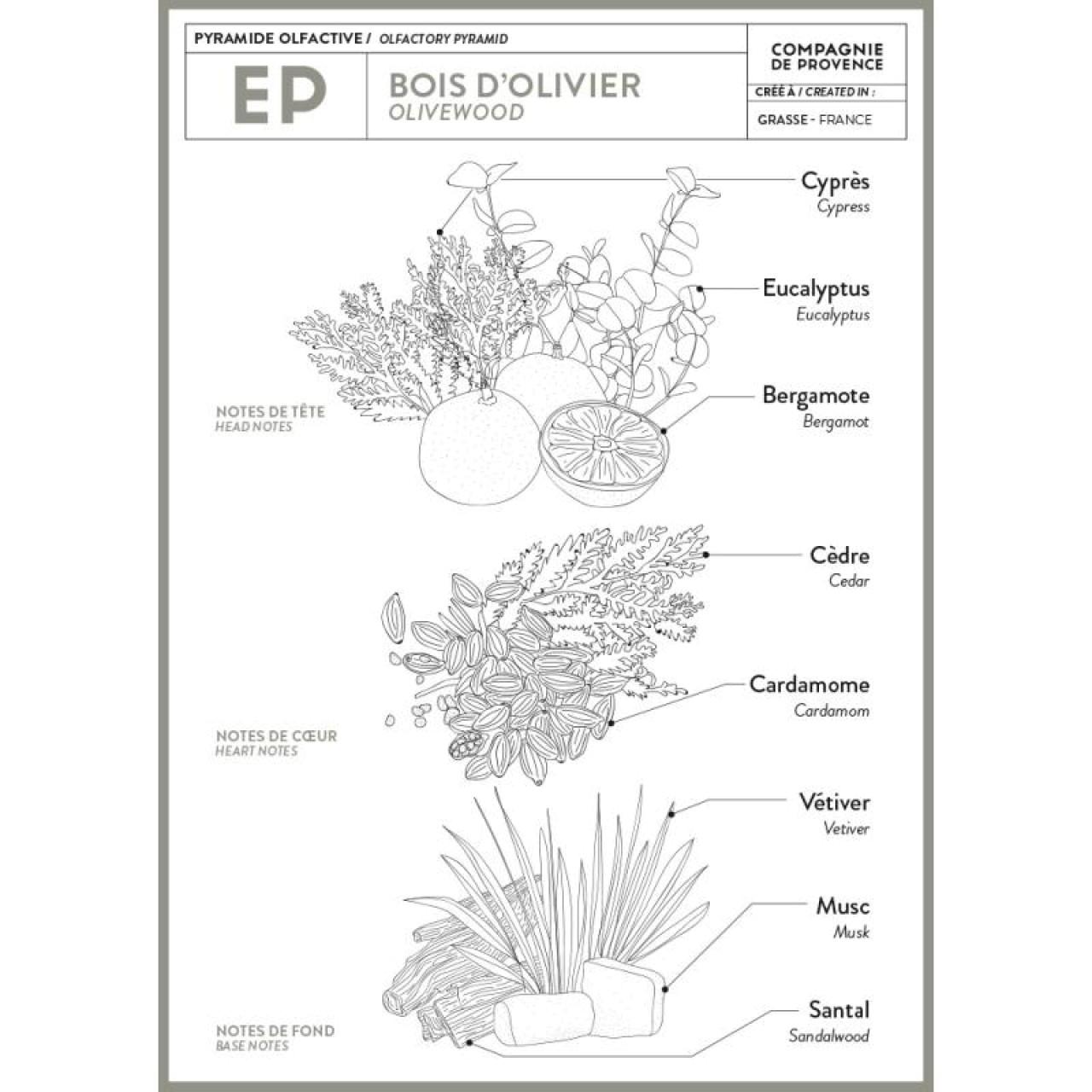 Sapone Profumato di Marsiglia al Legno dUlivo 25 g Compagnie de Provence Italia CPPF0101SS025BO-01
