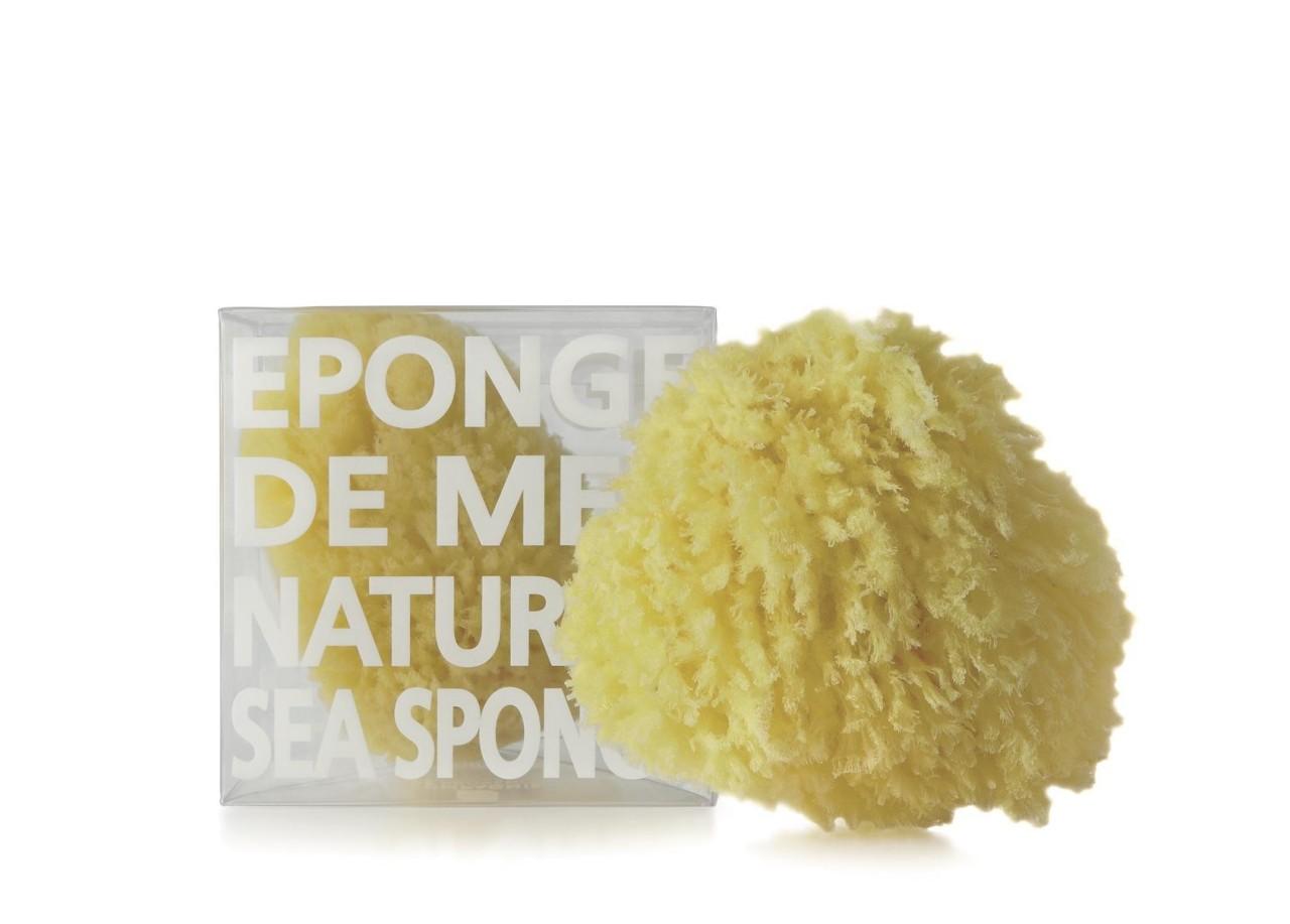 Spugna di Mare Naturale Modello Medio Compagnie de Provence Italia CP90047-01